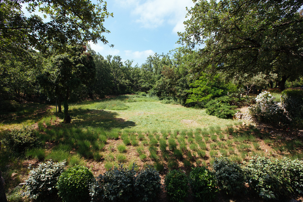 The planted yard Bastide Avellanne | EAT.PRAY.MOVE Yoga Retreats | Provence, France
