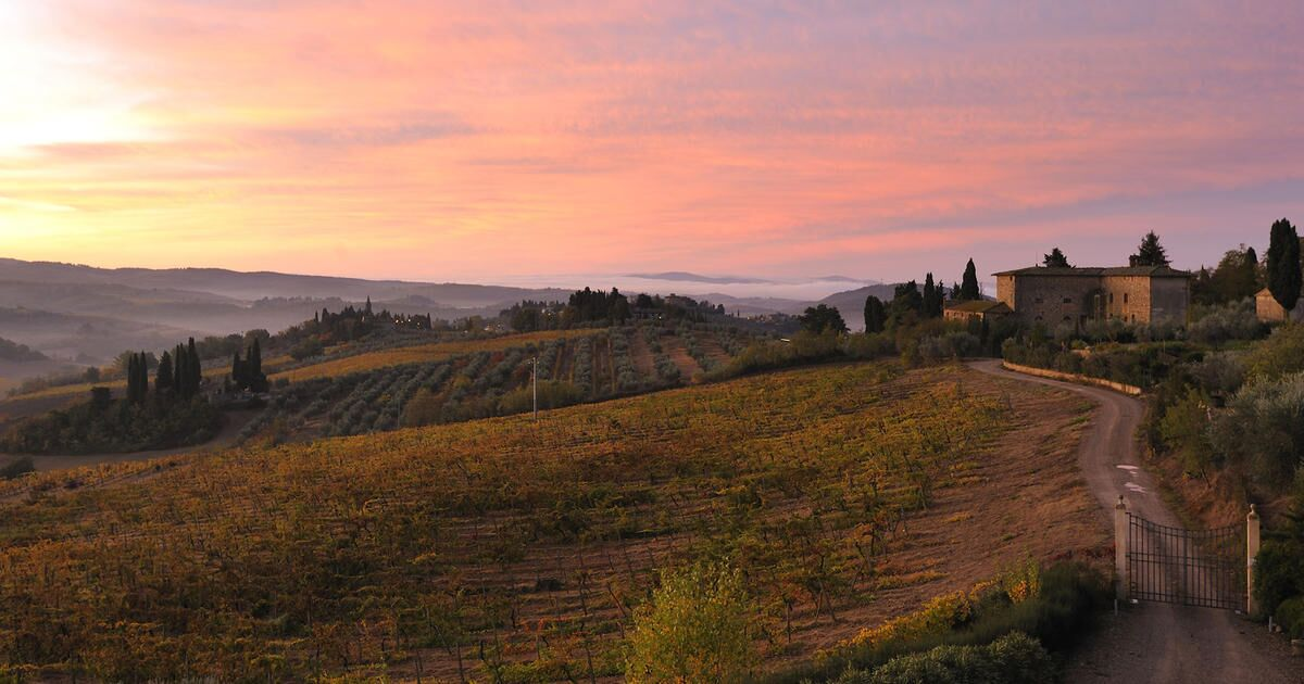 Tuscan sunset Castello del Nero | EAT.PRAY.MOVE Yoga | Chianti, Italy