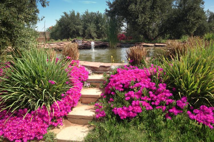 Serene walking path Peacock Pavilions EAT.PRAY.MOVE Yoga Retreats | Marrakesh, Morocco