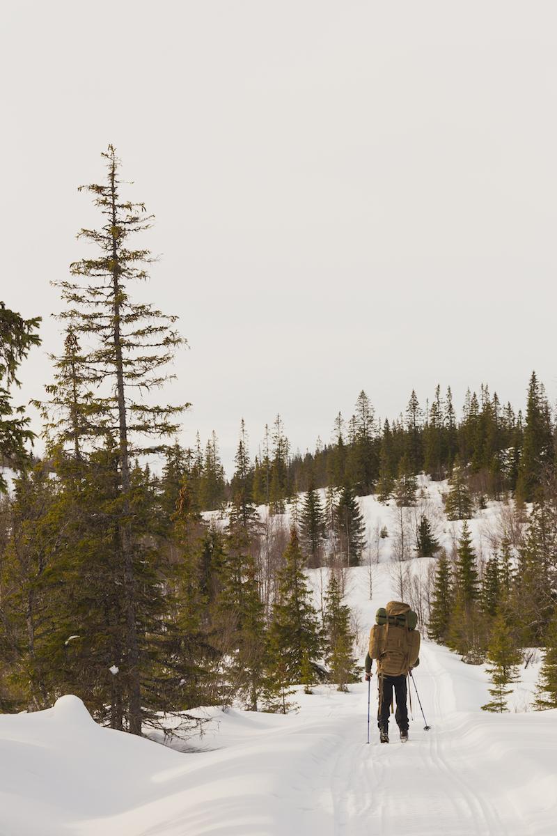 Eirik skiing through Ytterskogen (the outer forest).