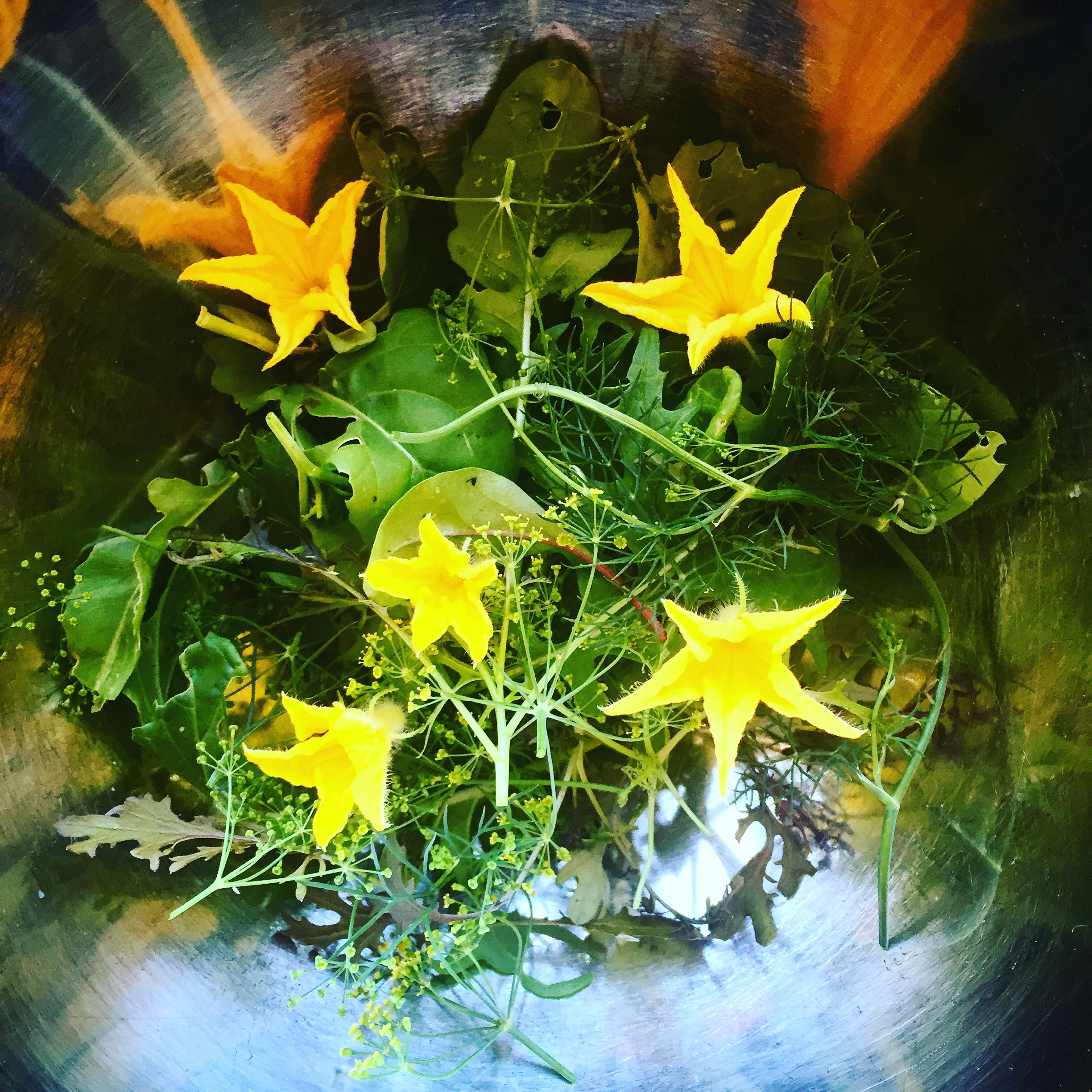 Fresh green salad by Hibiscus Dinners
