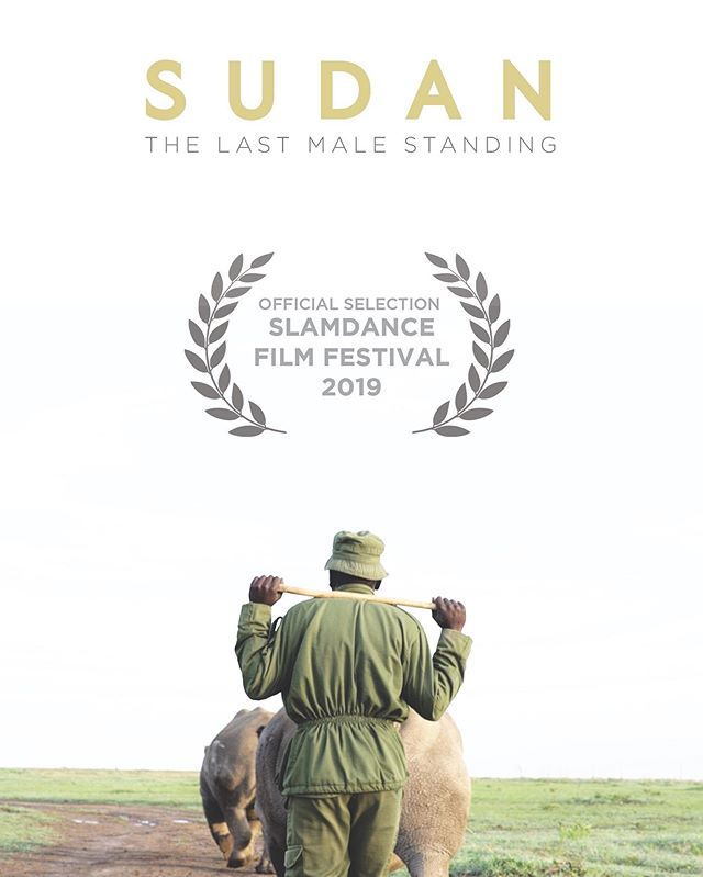 We are excited to announce that @sudanfilm will be premiering at Slamdance Film Festival in January. If you're going to be in Park City for Sundance/Slamdance this year, make sure to come catch a screening & connect with us. Congrats to @thatguyhambone on his directorial debut. He poured his soul into this one and we have a special story to share with the world. And a massive thank you to the rhino caretakers of @olpejeta for sharing your lives with us over the last four years.| #slamdance #documentaryfilm #ragtagtribe #sudanthefilm #thelastmalestanding
