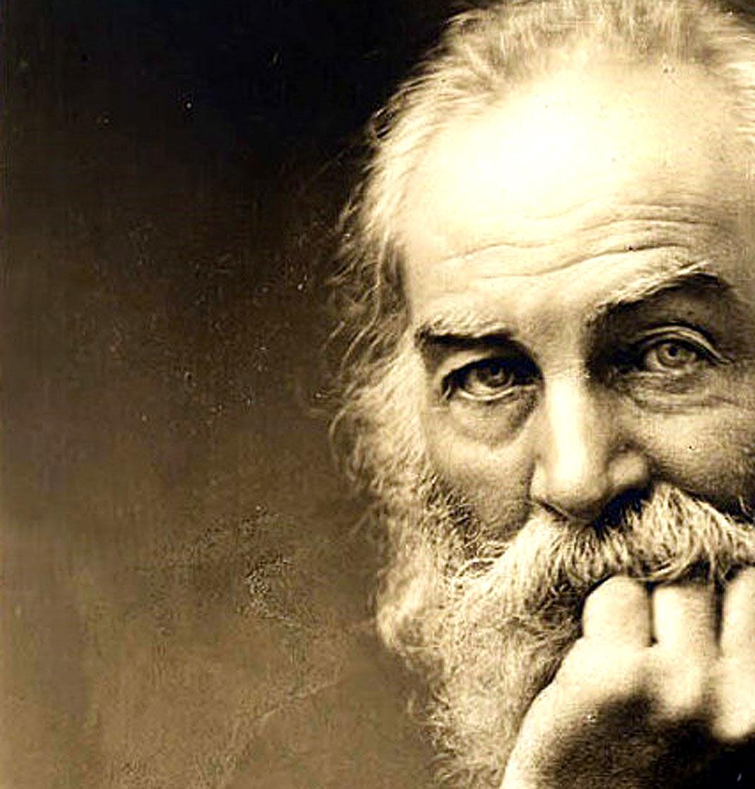 Whitman.jpg