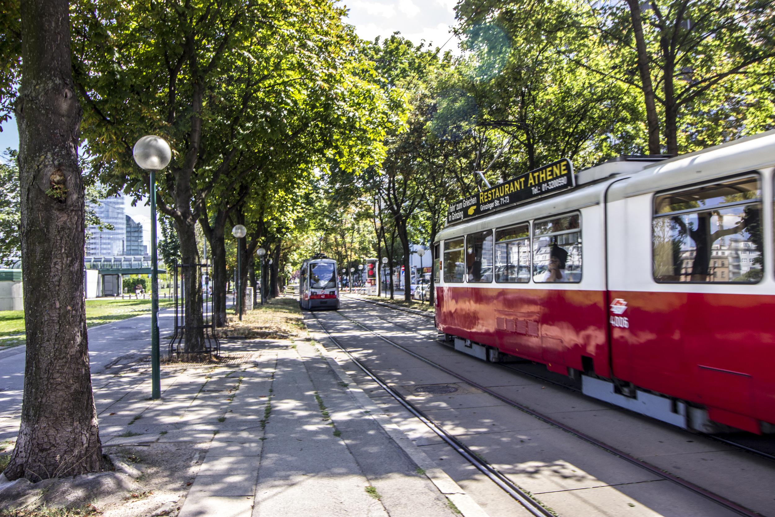Trams along the Danube in Wien.