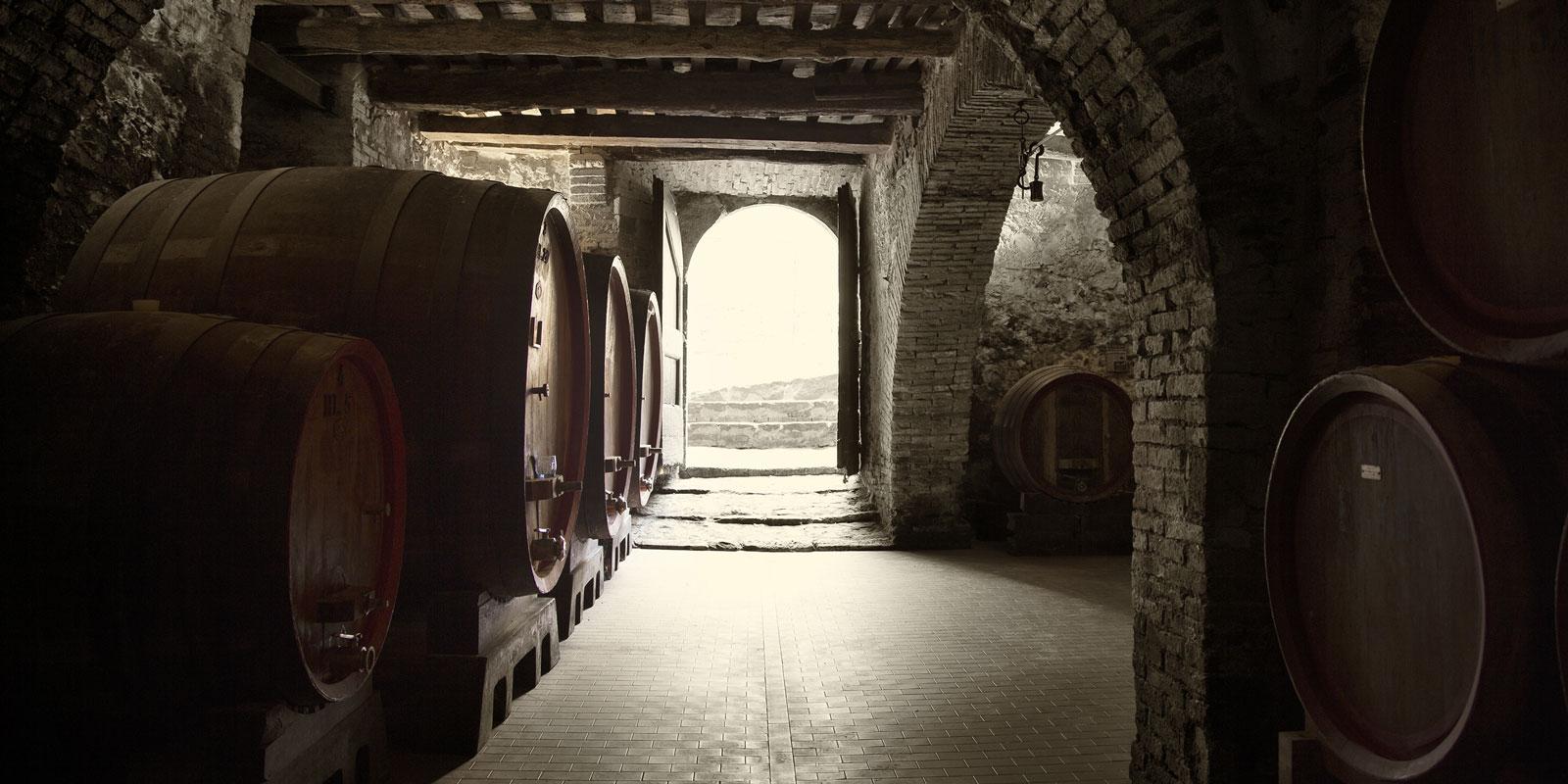 The Cellar at CIACCI PICCOLOMINI