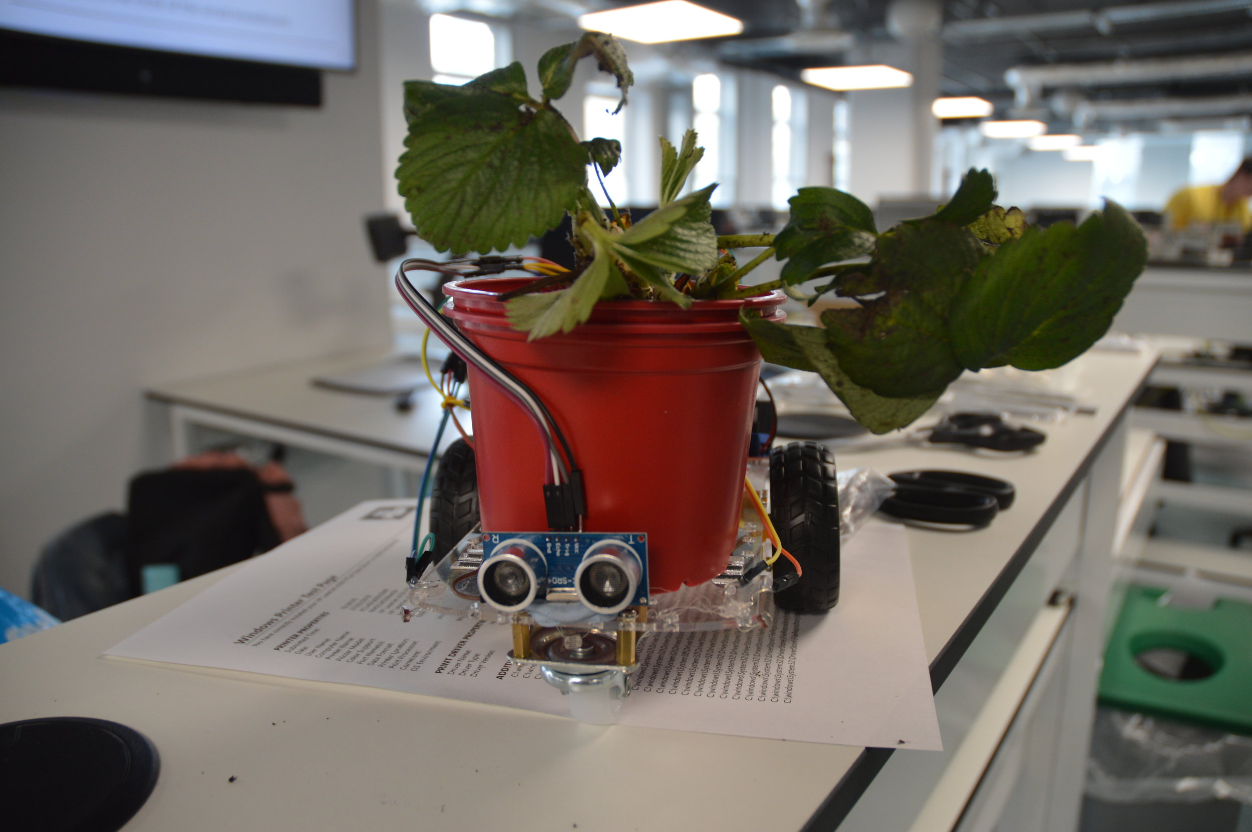 The end-goal mobile growbot w/strawberry plant
