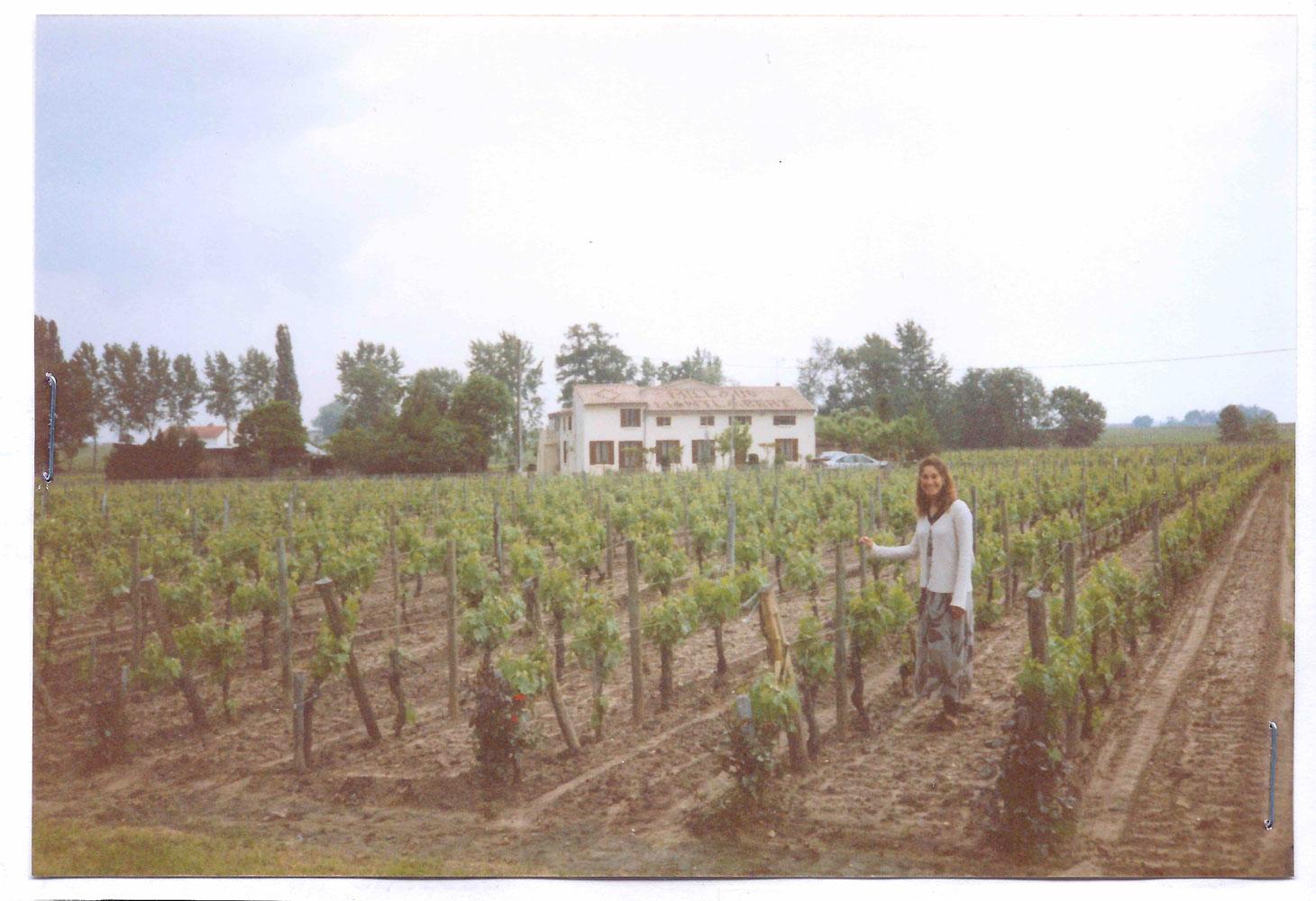 St. Emilion, France, vineyards in 1996.