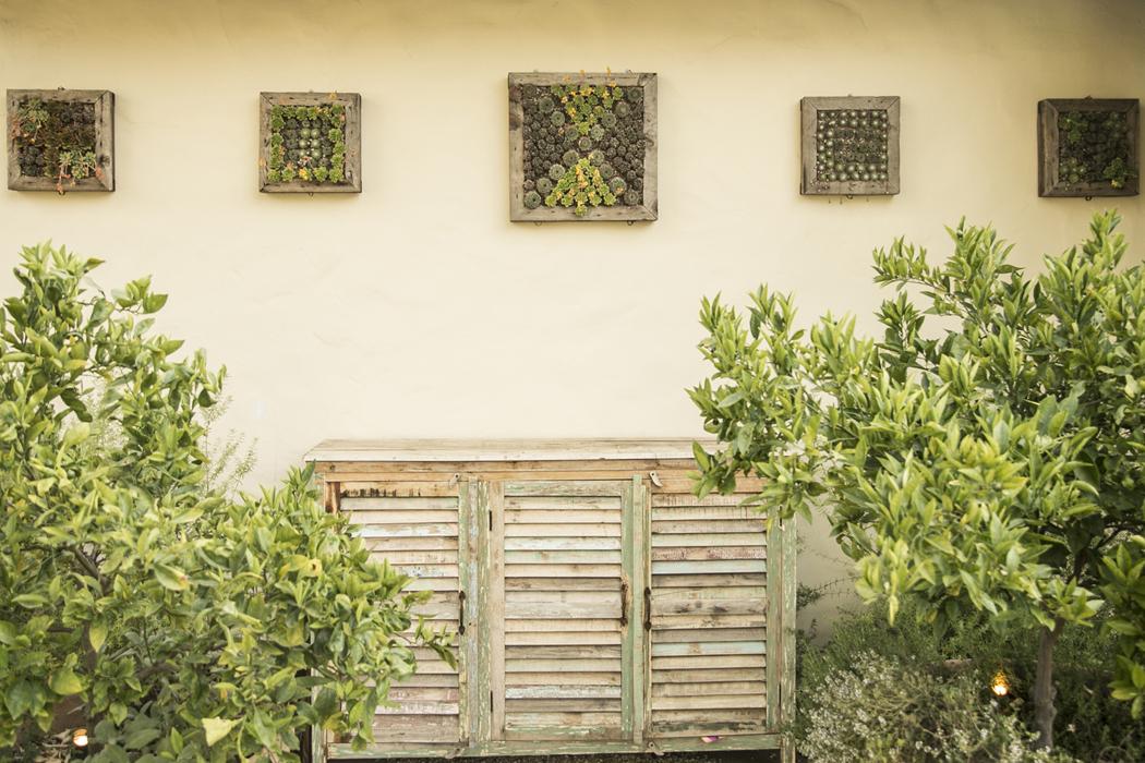 5-Succulent+Frames-1.jpg