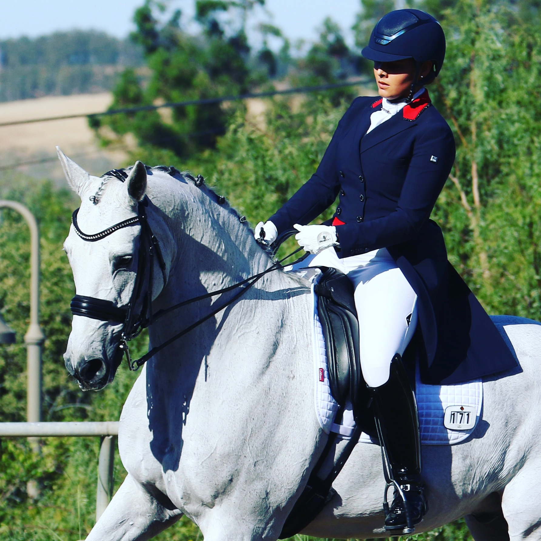 Shayne Dante - Shayne Dante Dressage: Grand Prix Dressage rider and trainer, USDF Bronze, Silver, and Gold Medalist on self-trained horsesUpcoming Competition Participation: 2022 Pan Asian Games and 2024 Paris OlympicsPC: Shayne Dante