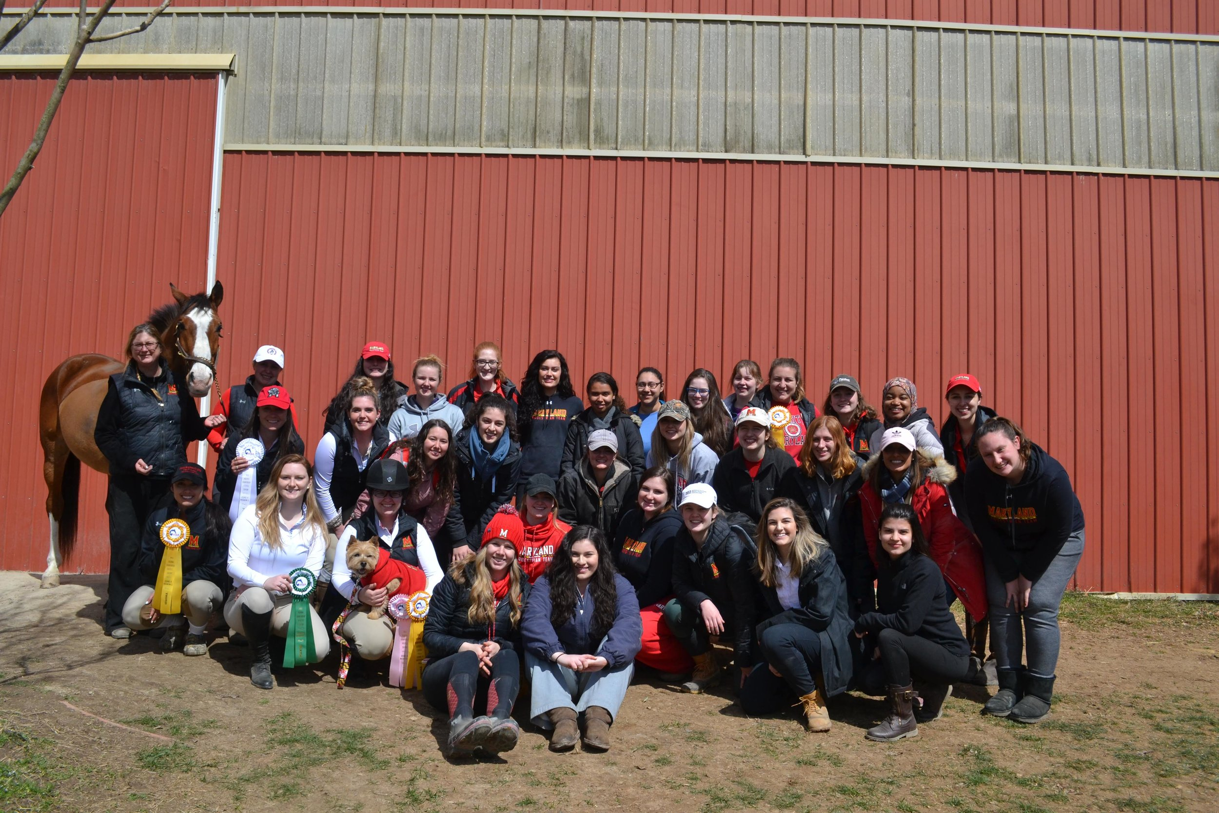 The University of Maryland Equestrian Team - University of MarylandPC: U of Maryland Equestrian Team