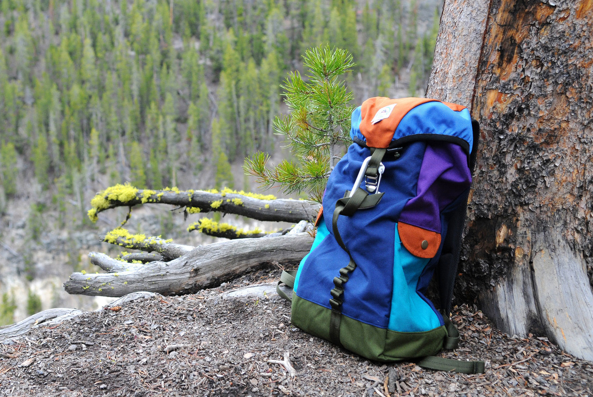 Why Is This Outdoor Brand Getting Pegged As a Fashion Label? - Crusty rock climbers and snooty fashionistas agree on these backpacks, and that's kind of a miracle.