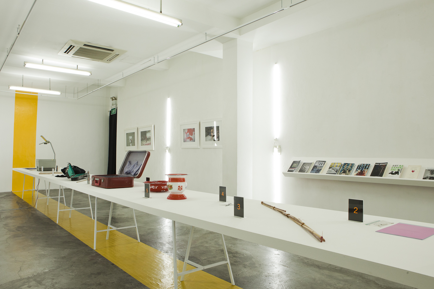 Archiving Cane (2012) - Exhibition Opening