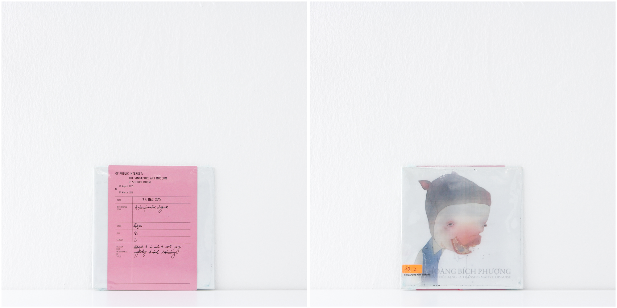 'Thay Hinh Doi Dang, A Transformative Disguise', 24/12/15, Divya, 18, Female