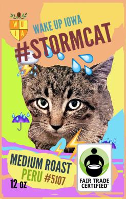 stormcat.png