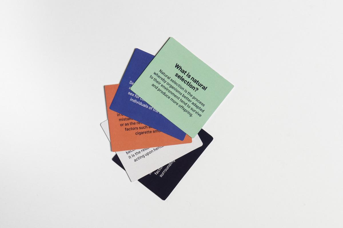 Term-cards_1200x800.jpg