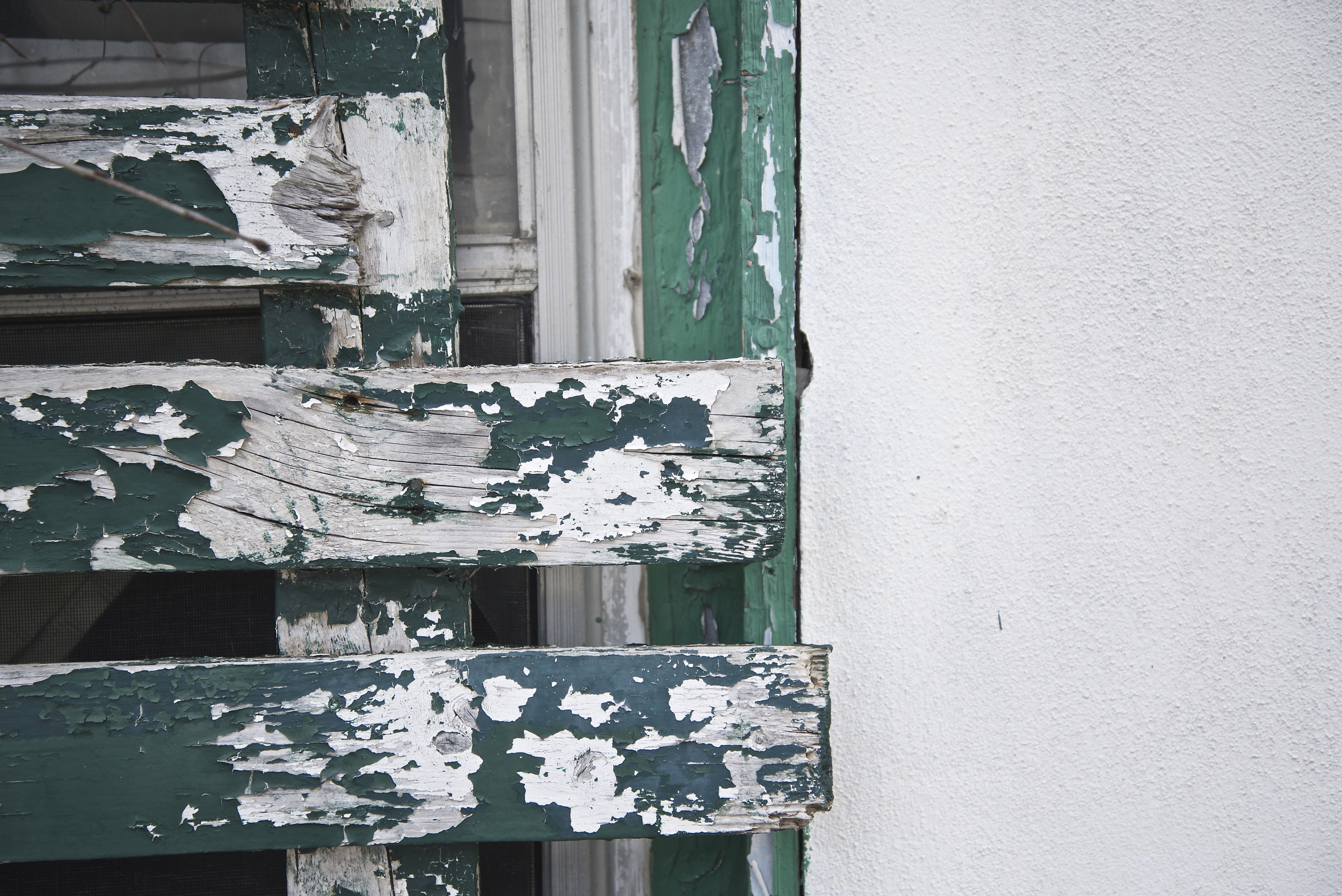 The green shutters on this house are in need of a new coat of paint...but the green is what caught my eye.