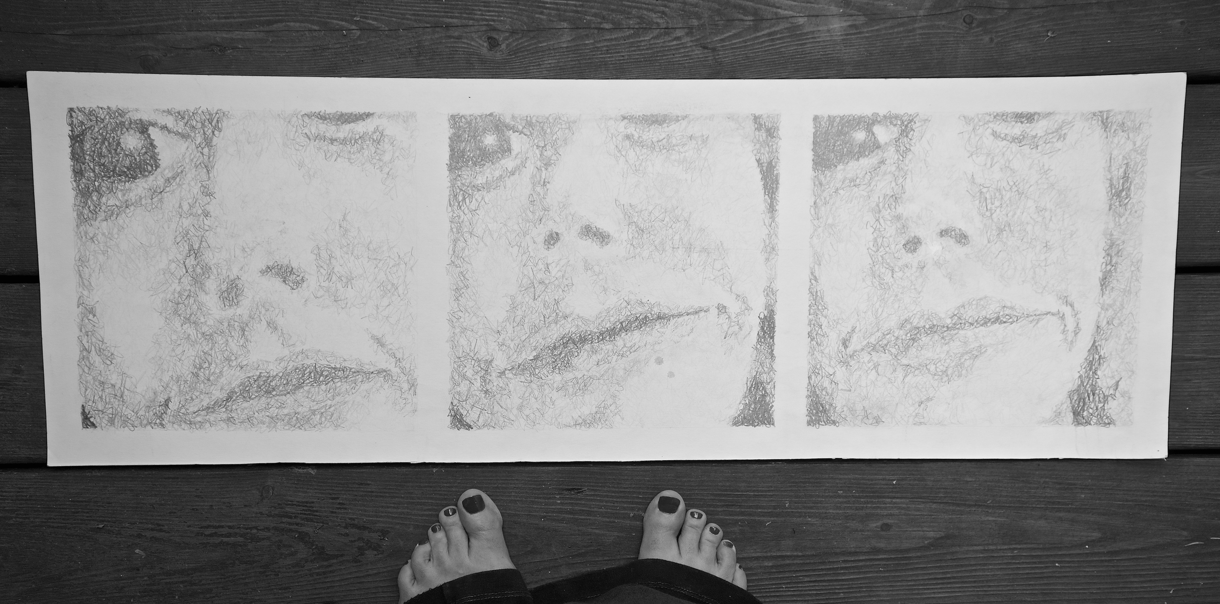 This assignment was a self portrait. This is one of a triptych.The first focuses on the eyes. The second on my eyes and nose, and lastly my entire face. I remember that I did quite well on this even though I did the entire assignment the day before it was due. To be twenty again!