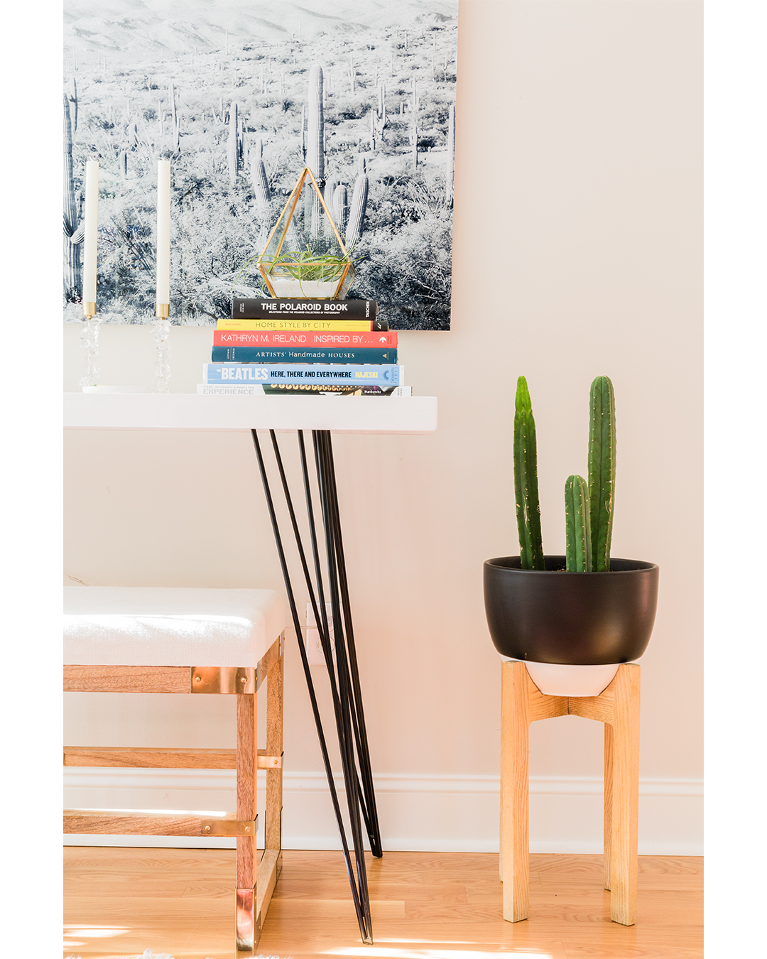 I love how Lauren has incorporated plants into the vignettes throughout her home. They really are an inexpensive element that adds a lot of character.
