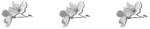 mb26-dharma2.jpg
