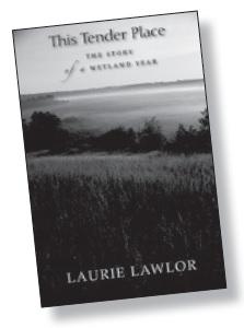 mb42-Book1.jpg