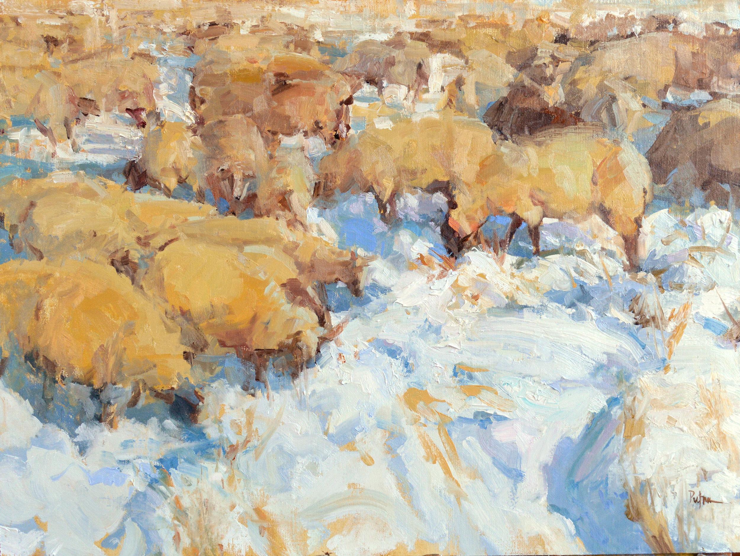 Flocked, 18x24, oil on linen. $5400. Available through  Putnam Studio .