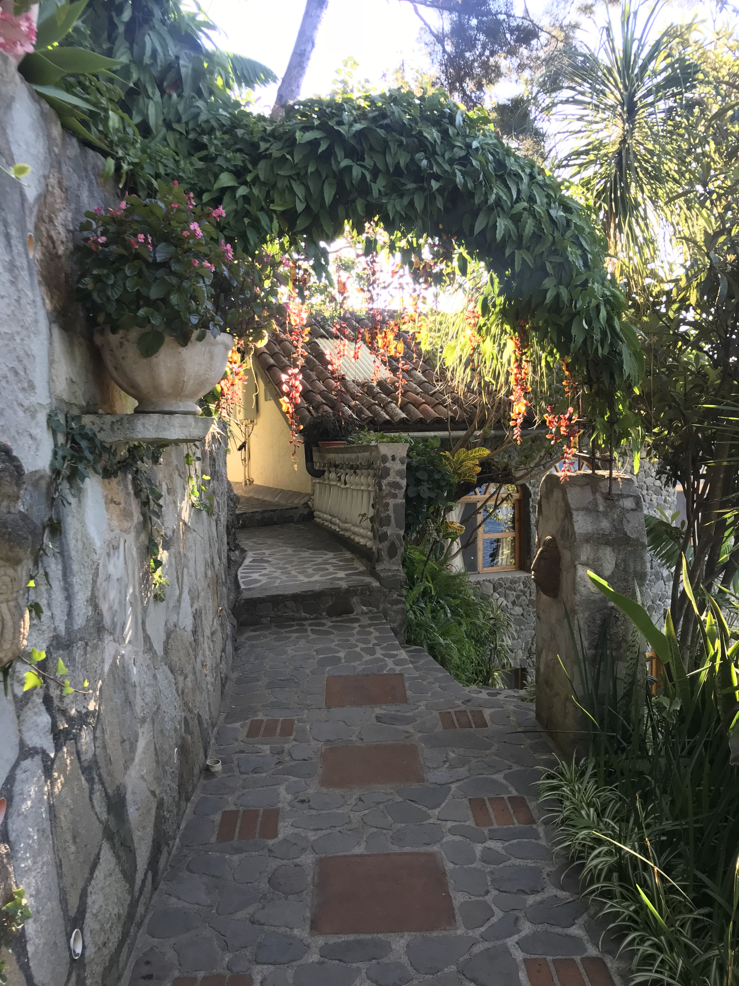 The little pathway on the way to my room, so perfectly detailed with plants and sculpture.