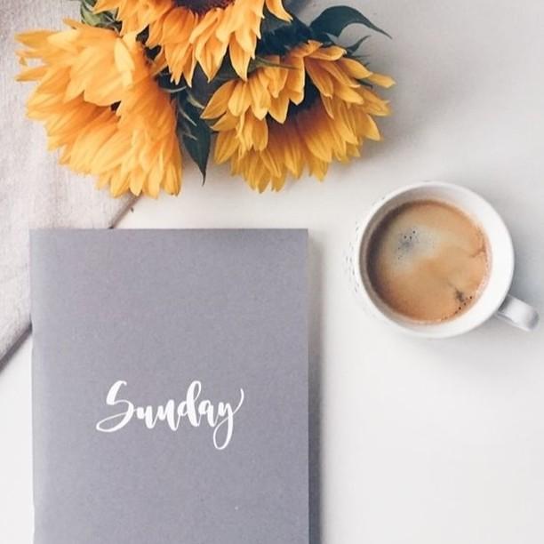 Relax & Recharge.⠀⠀⠀⠀⠀⠀⠀⠀⠀ ⠀⠀⠀⠀⠀⠀⠀⠀⠀ 📷 @creativefeeldesigns ⠀⠀⠀⠀⠀⠀⠀⠀⠀ ⠀⠀⠀⠀⠀⠀⠀⠀⠀ #graphicdesigner #graphicdesign #websitedesigner #freelanceentrepreneur #theeverygirl #thatsdarling #squarespacedesigner #darlingmovement #communityovercompetition #goals #risingtidesociety #beingboss #mycreativebiz #branddesigner #marketing #girlboss #officespace #creativespaces #creativeentrepreneur #womeninbusiness #pursuepretty #creativeminds #theeverygirl #womeninbiz #calledtobecreative #boulevardnorth #journal #sundayvibes #sundayrecharge