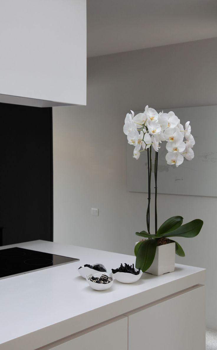 modern Zen kitchen with orchids