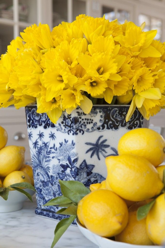 yellow flowers in a white and blue bowl