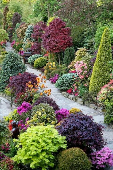 vibrant and sculptured garden