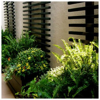 Japanese style box gardening