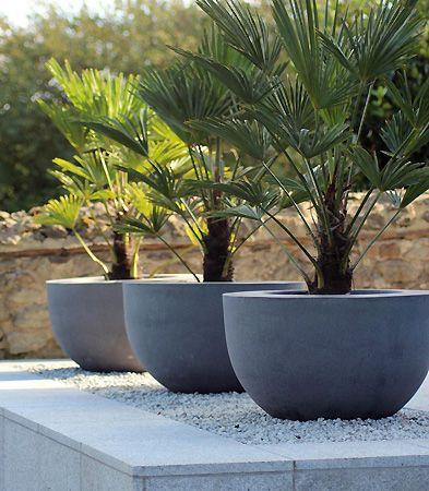 large modern concrete planters