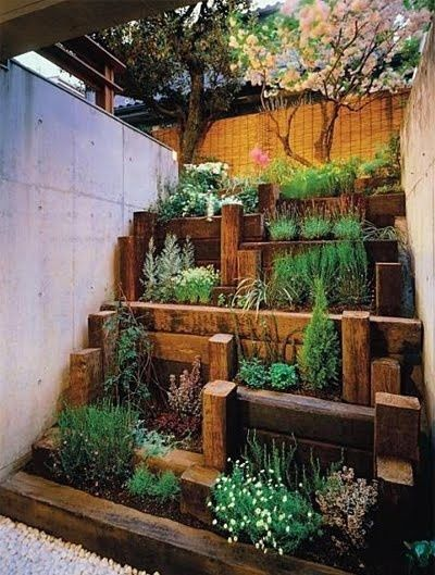 terraced pocket garden