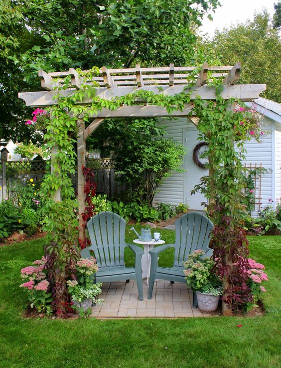 small garden pergola with creepers