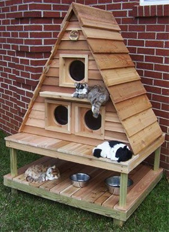 pallet outdoor cat house