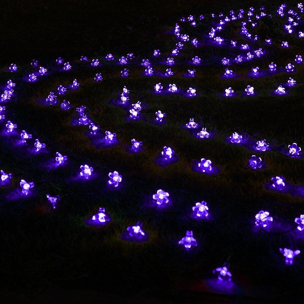 purple blossom outdoor string lights