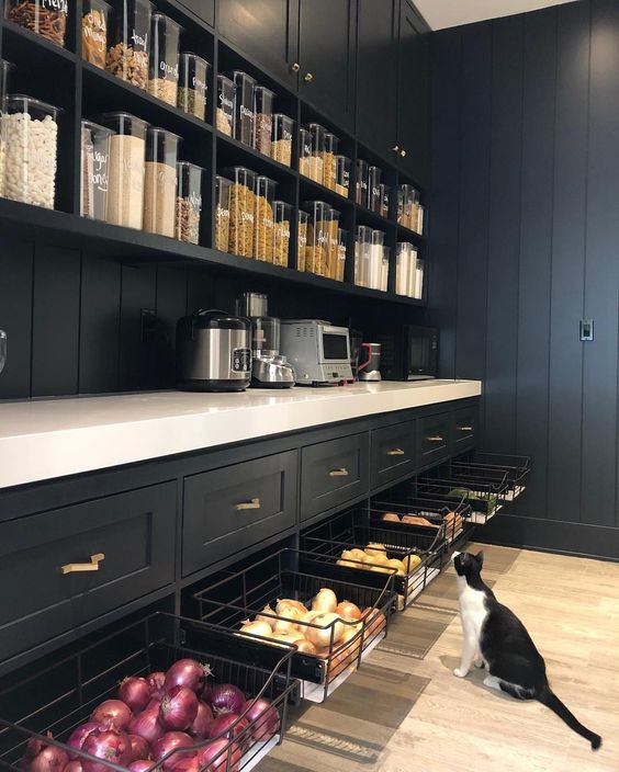 Kitchen Pantry Ideas And Designs