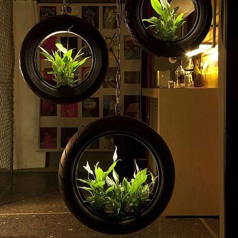 hanging tire planters