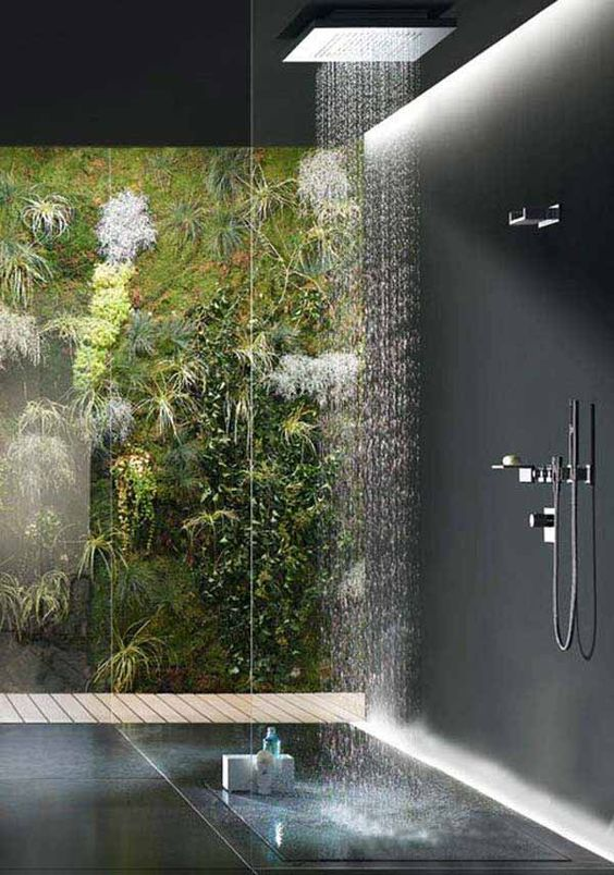 plants inside a bathroom