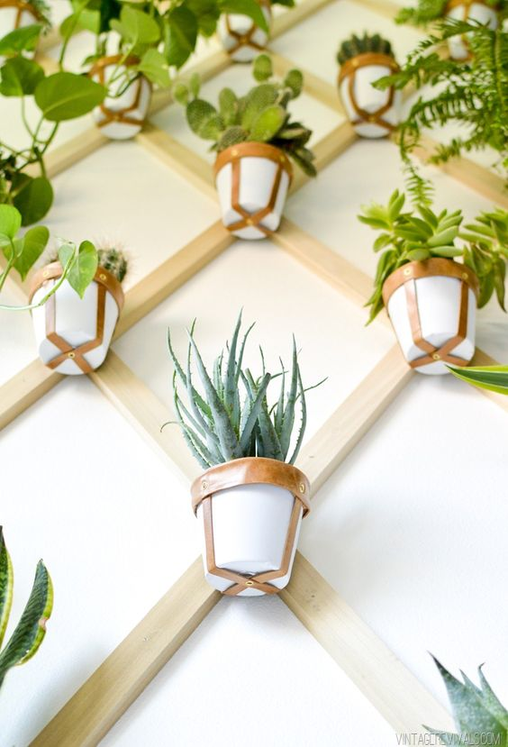 trellis wall plant holder
