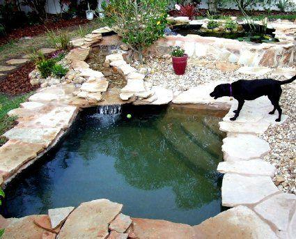 diy dog pond