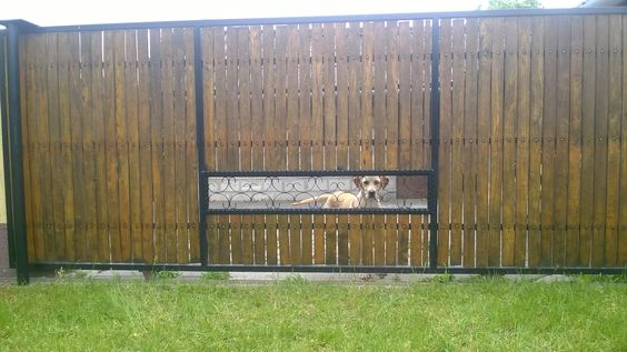 fence with pet window
