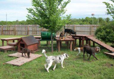 pet playground backyard