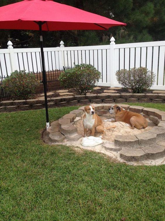 sandpit for dogs