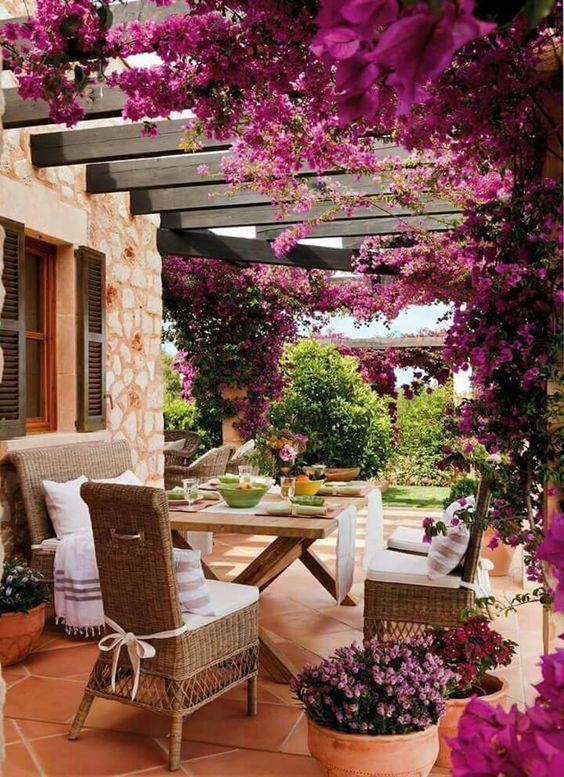 hibiscus arbour