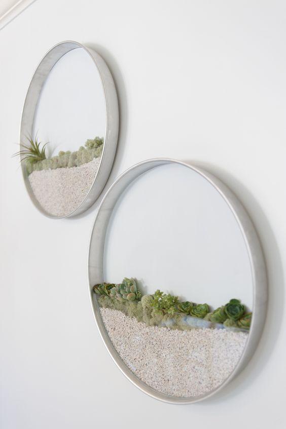 wall succulent terrarium