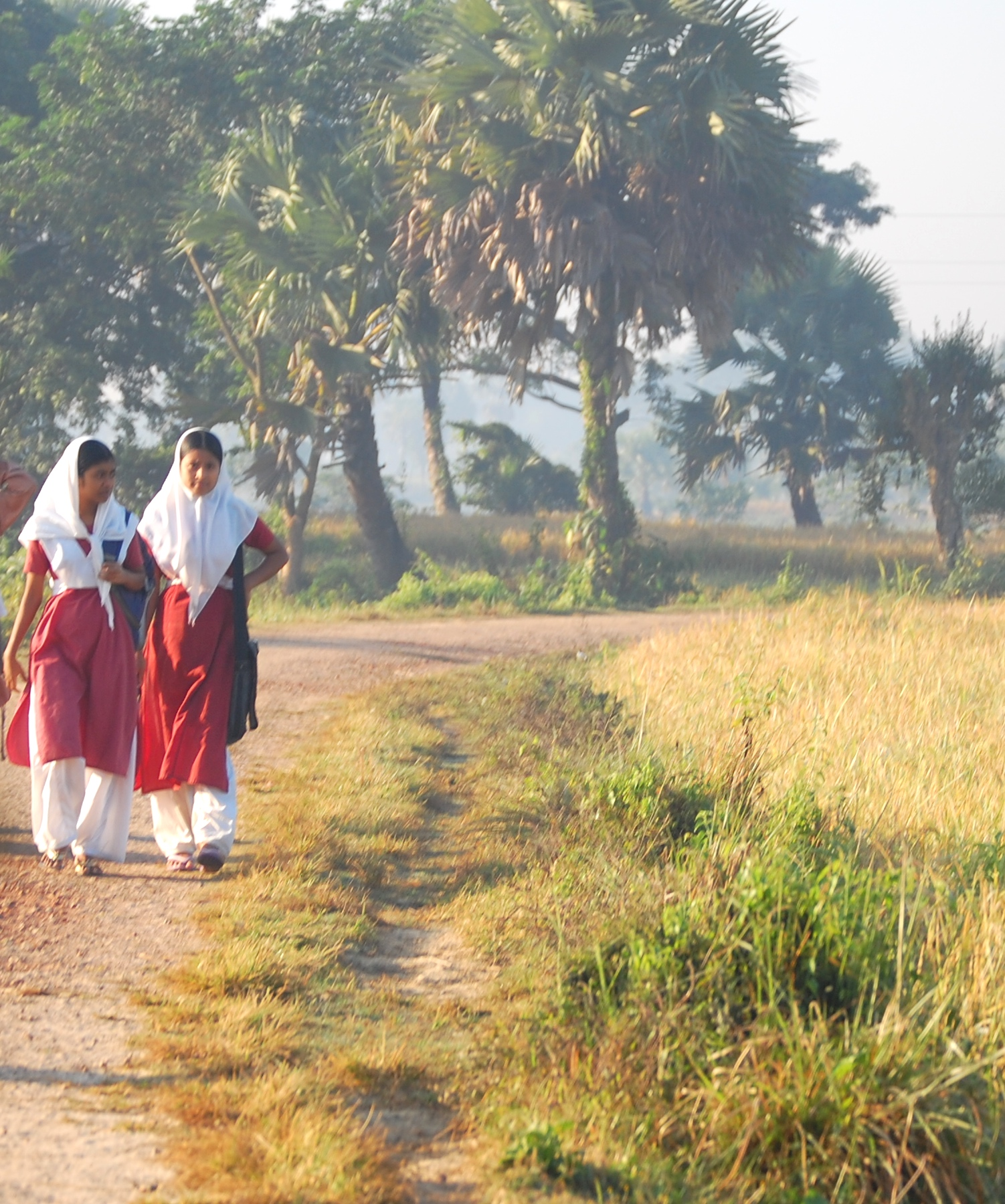 Girls walking to school