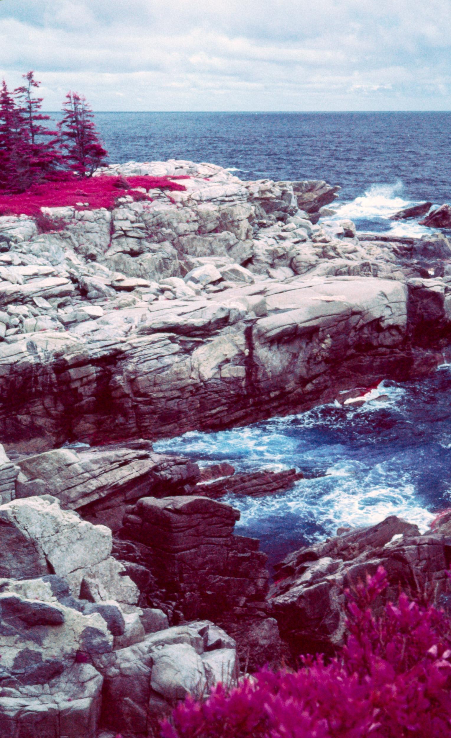 Black Brook Cove