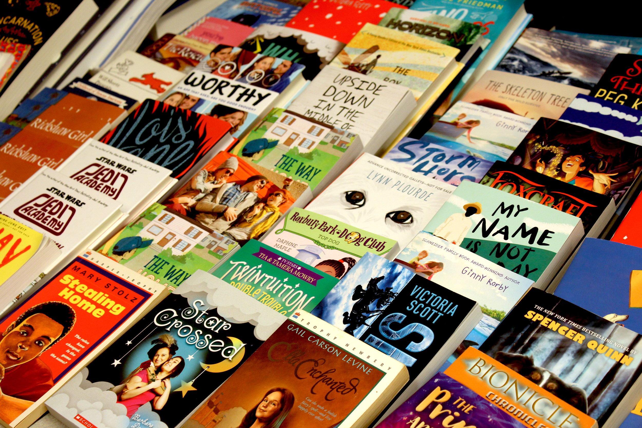 Bring on the Books Book Fair! - April 2017