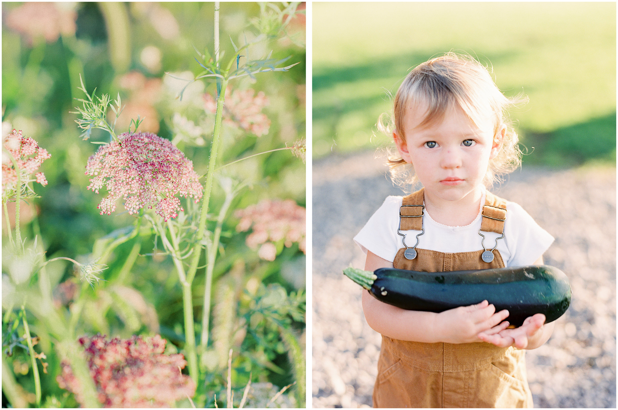 goosecreek-gardens-floral-company-pittsburgh-family-lifestyle-photographer-anna-laero-photography.jpg
